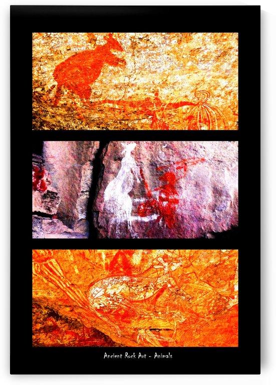 Ancient Rock Art  - 1 by Lexa Harpell
