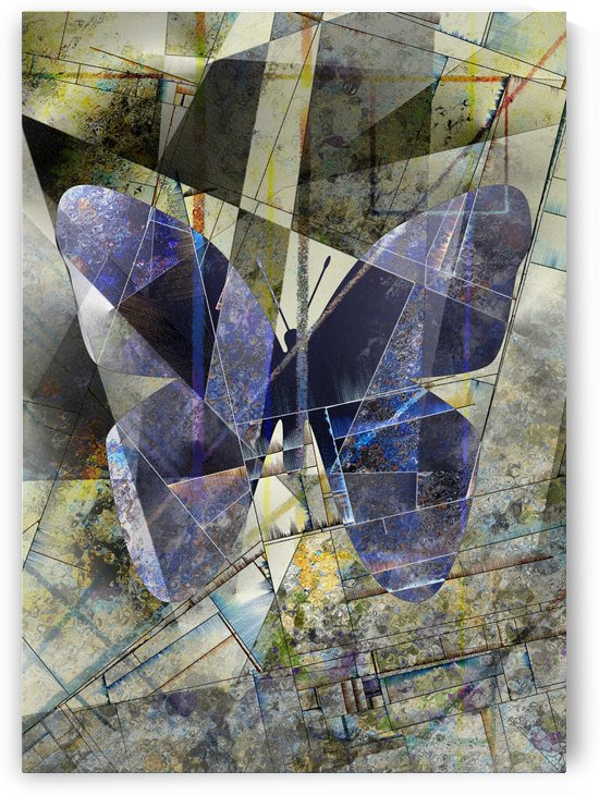 Butterfly by Bruce Rolff