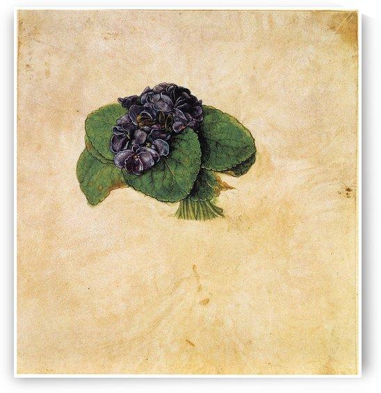 Violet Bouquet by Albrecht Durer
