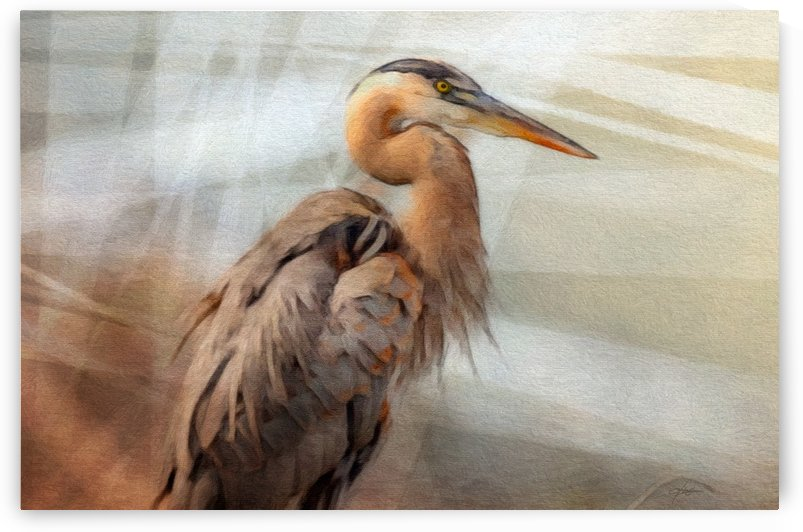 GREAT BLUE HERON Painting by George Bloise