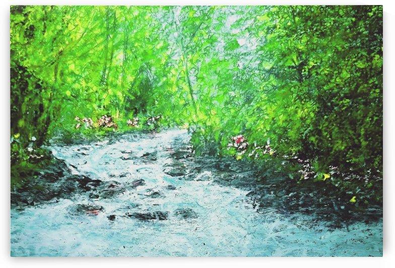 Papineau Creek by djjf