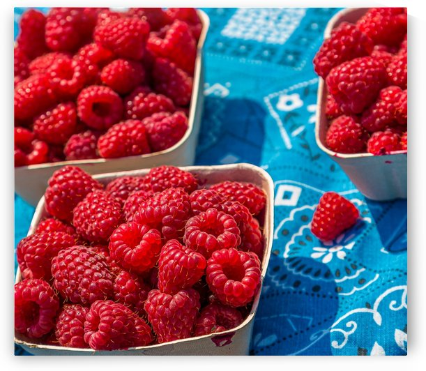 Fresh Red Raspberries by Darryl Brooks