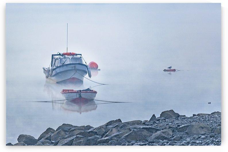 Foggy Scene Puyuhuapi Lake, Patagonia, Chile by Daniel Ferreia Leites Ciccarino
