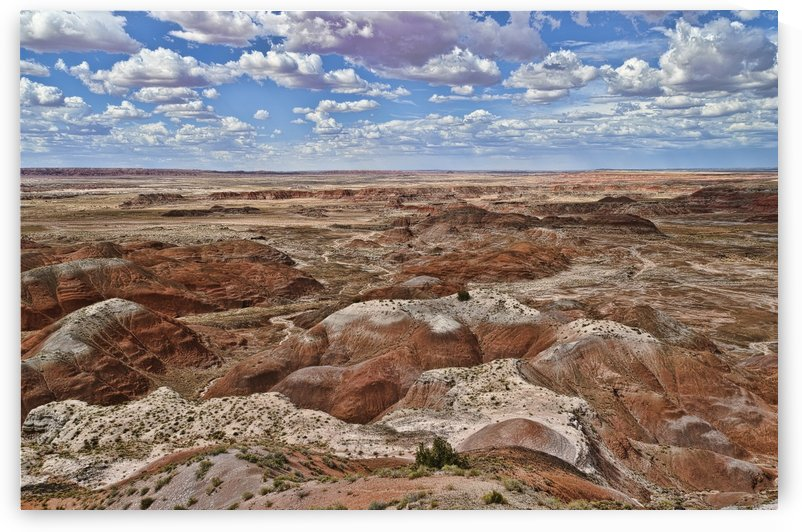 Painted Desert by Ian Barr