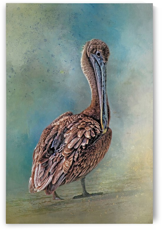 Beach Bird 2 by HH Photography of Florida