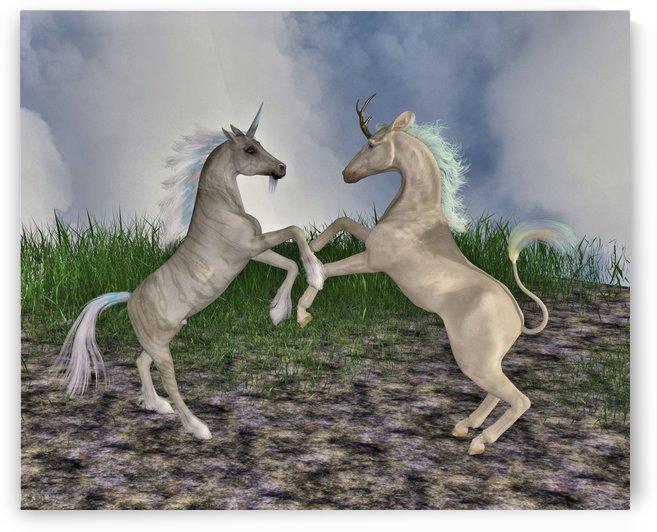 Pony Play by The Art Of Fantasy