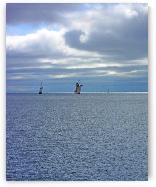 Tall Ships Vista by Castle Green Enterprises