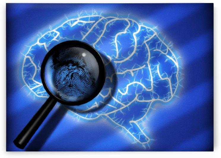 Human Brain by Bruce Rolff