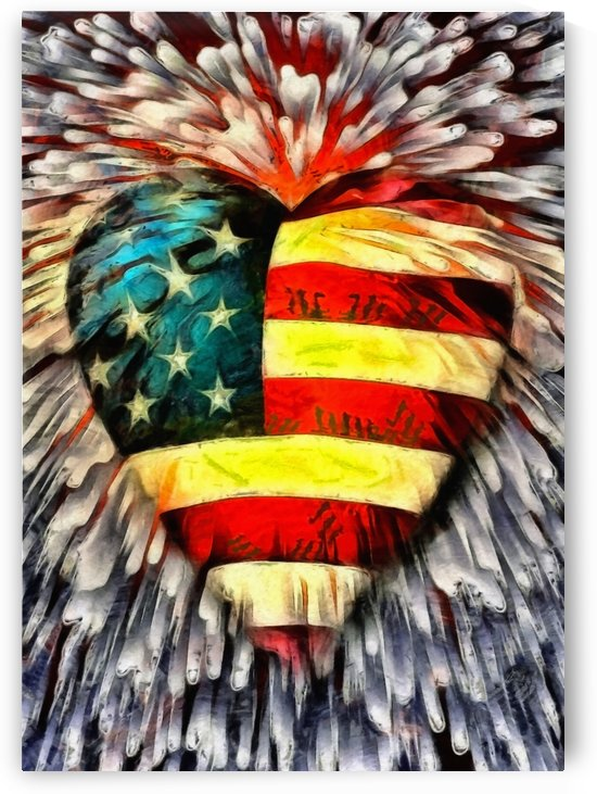 USA Heart by Bruce Rolff