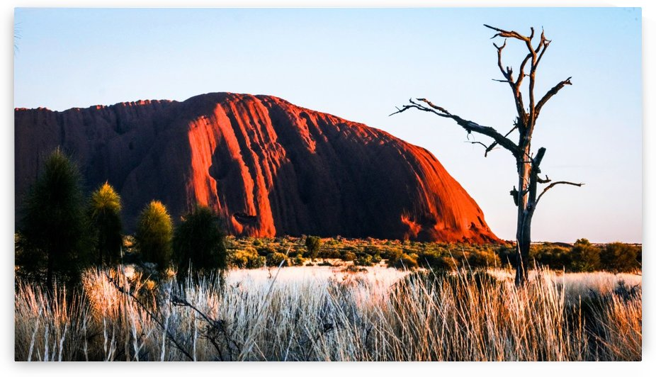 Uluru at Dawn - 1 by Lexa Harpell