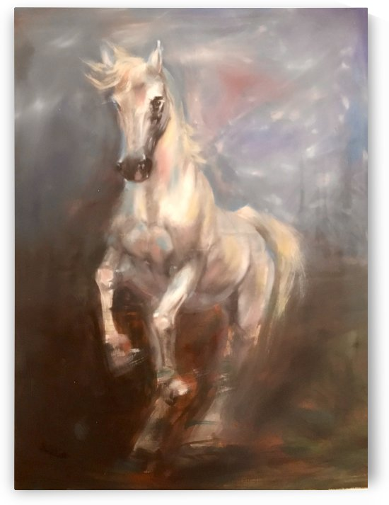 The galloping horse by Jackie Rimmer