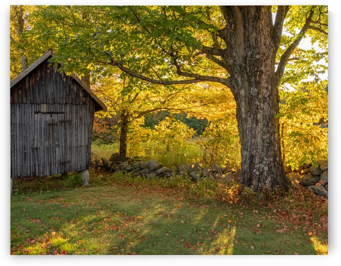 Corn Crib by Dave Therrien