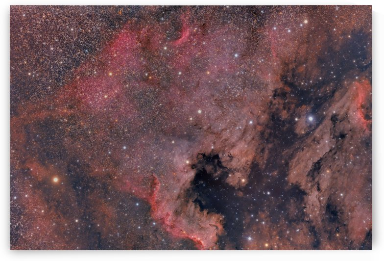 North America Nebula by Dave Robitaille