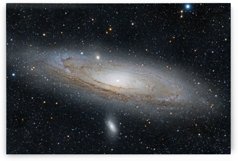Andromeda Galaxy M 31 by Dave Robitaille