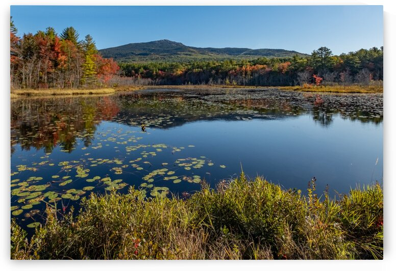 Mt. Monadnock 1 by Dave Therrien
