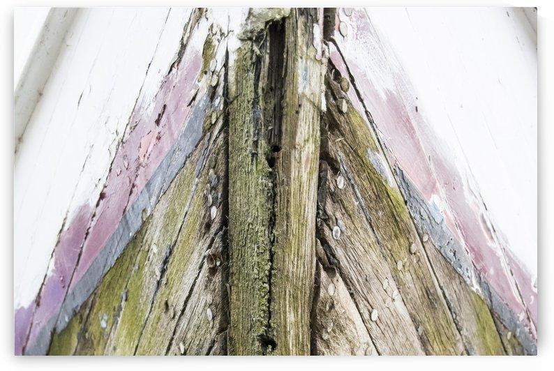Le vieux loup de mer 2 by Julie Desrochers