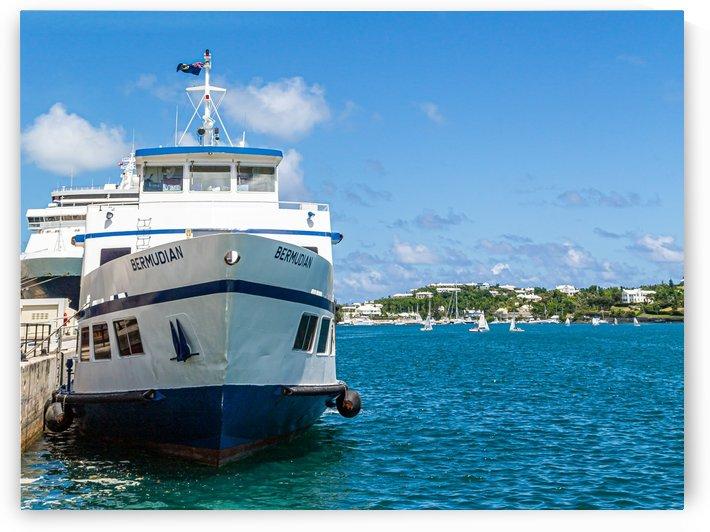 Bermudian on Blue Water by Darryl Brooks