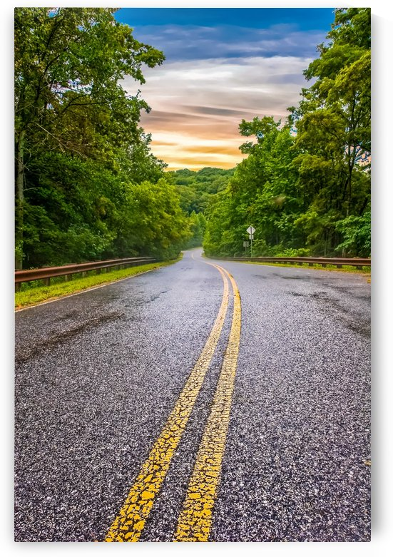 Wet Road Curving Into Hills at Sunset by Darryl Brooks