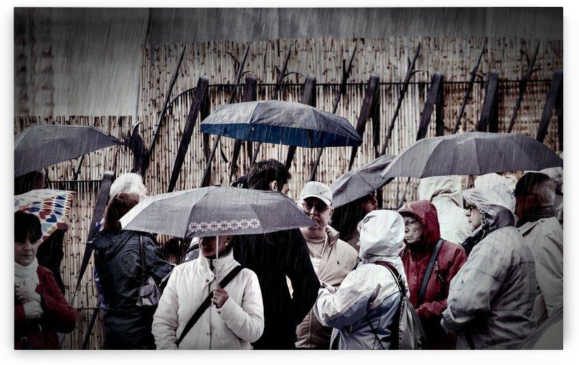 People in Rain Gear with Umbrellas by Darryl Brooks