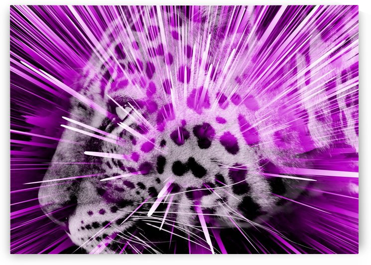 Leopard pop 3 by Thula-Photography