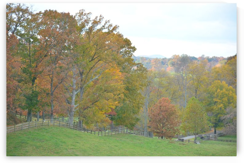 Fall In Middleburg Virginia Photograph by Katherine Lindsey Photography