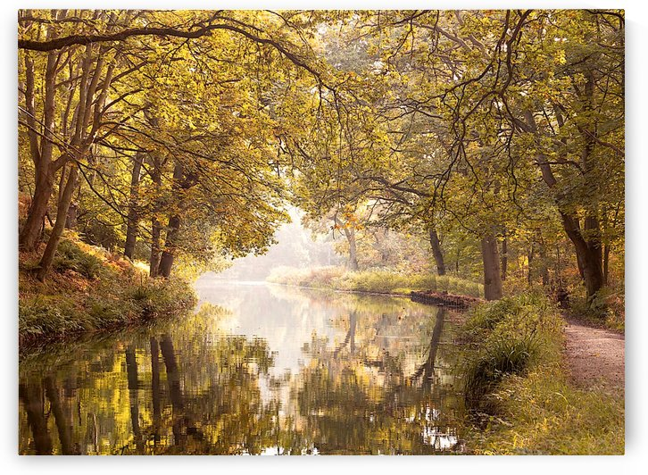 Basingstoke Canal by AmilenaCollection