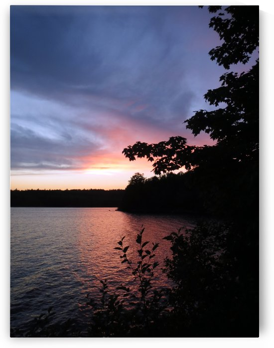 Falls Lake Sunset by Connie Schofield Art