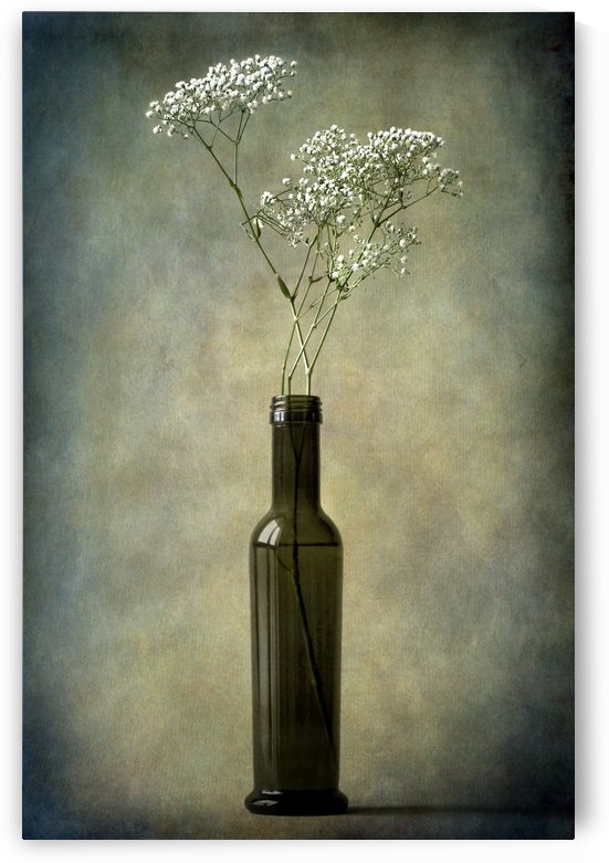 The olive oil bottle by Barbara Corvino
