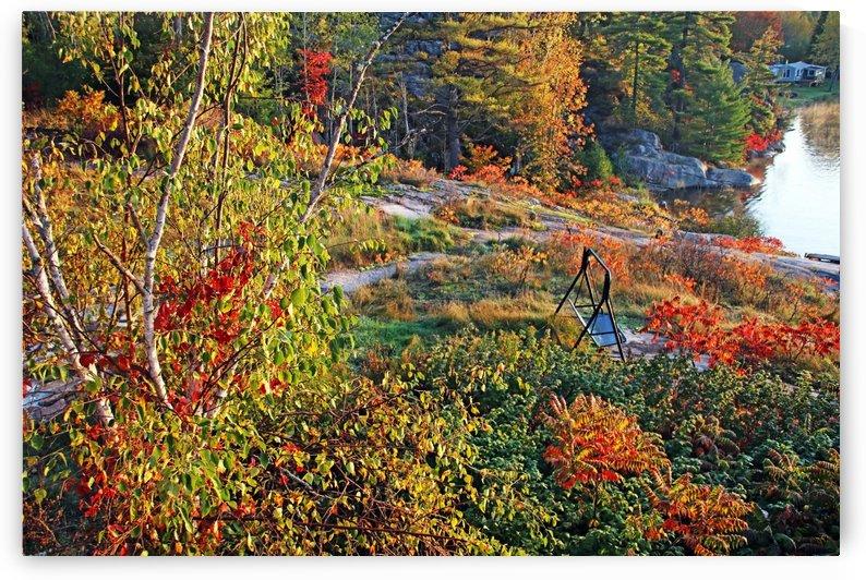 Swing Into Fall by Deb Oppermann