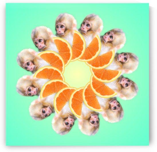 Orange you glad i didnt say Monkey 1080 by ASTRO GOD