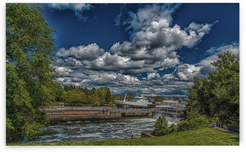 Golden Alaska Through Ballard Locks by Darryl Brooks