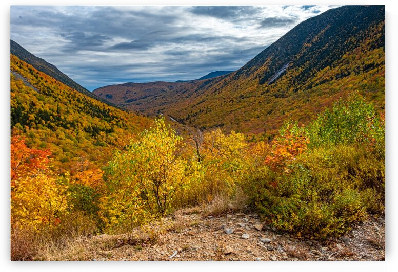 Crawford Notch 5 by Dave Therrien