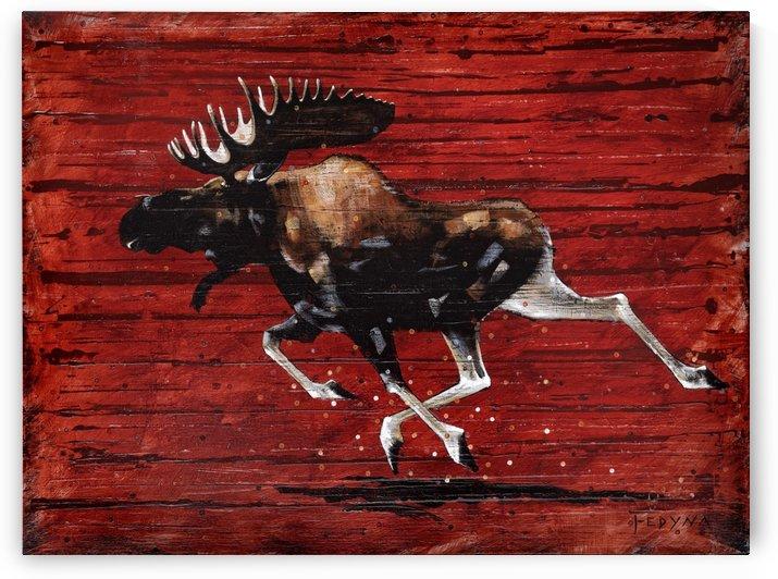Gangly Moose by Ric Fedyna