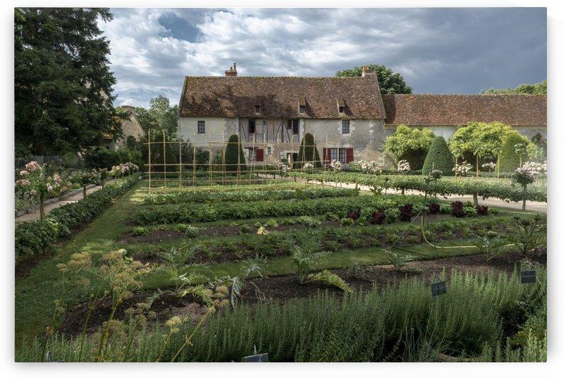 The vegetable garden by Gerald Cummins