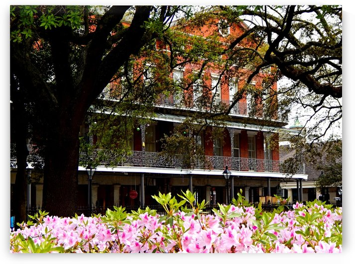 Springtime in New Orleans by Peter Horrocks
