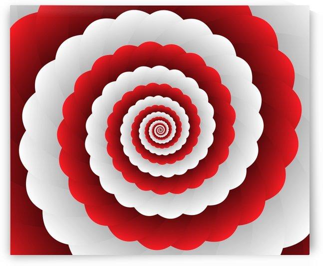 Red Modern Floral Interior Design by rizu_designs
