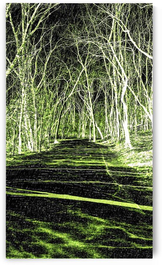 Art Trail of Lime Green by Jeremy Lyman