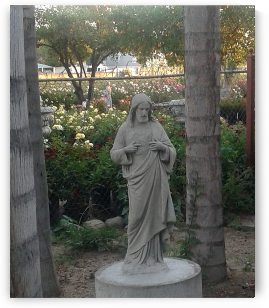 Jesus Statue at the flower farm by RollaD