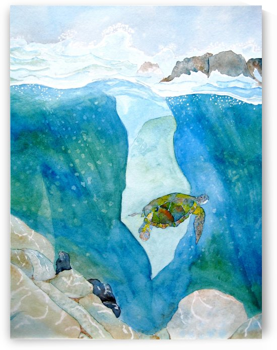 Turtle Speaks by Donna Stares