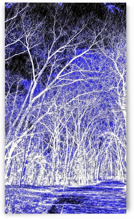 Art Trail Of Blue Violet by Jeremy Lyman