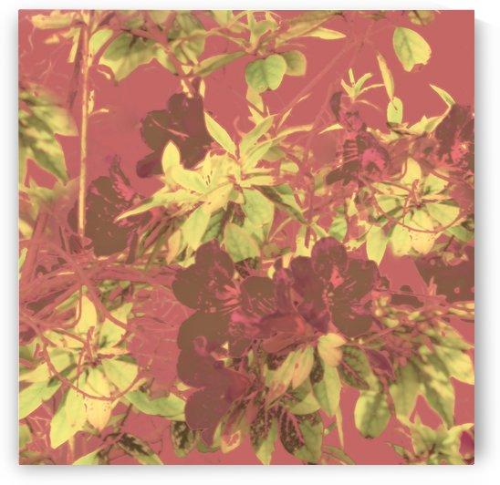 Tropical Vintage Floral Artwork Print by Daniel Ferreia Leites Ciccarino