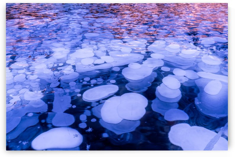 Abraham Lake Bubbles by Santo Jin Photography