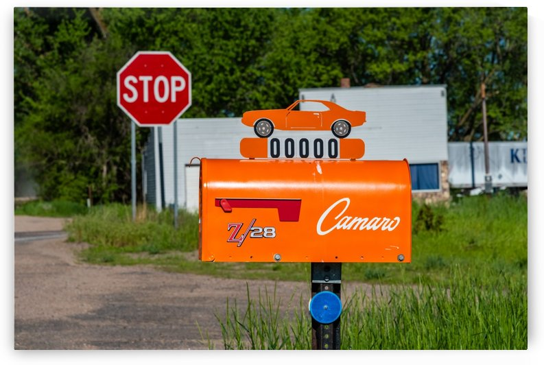 Camaro Car Enthusiast by Garald Horst