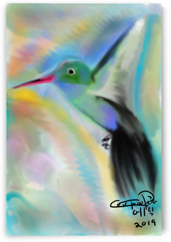 hummingbird by Eric  Todd Price