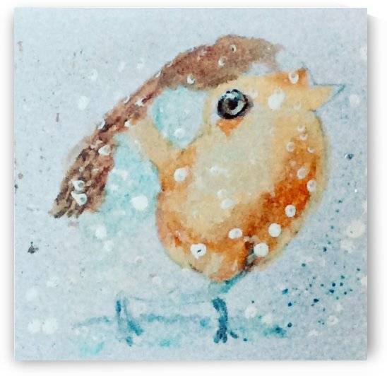 Robin Redbreast by Zaramar Paintings