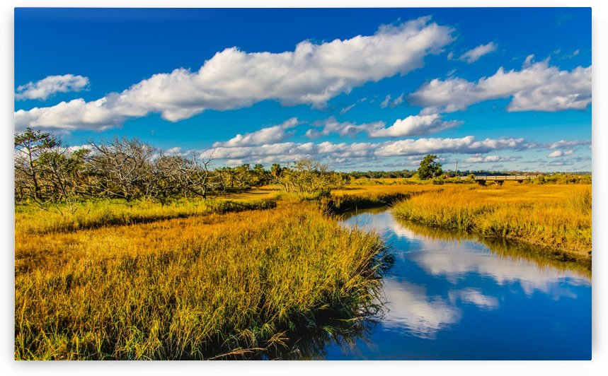 Marsh View with Creek by Darryl Brooks