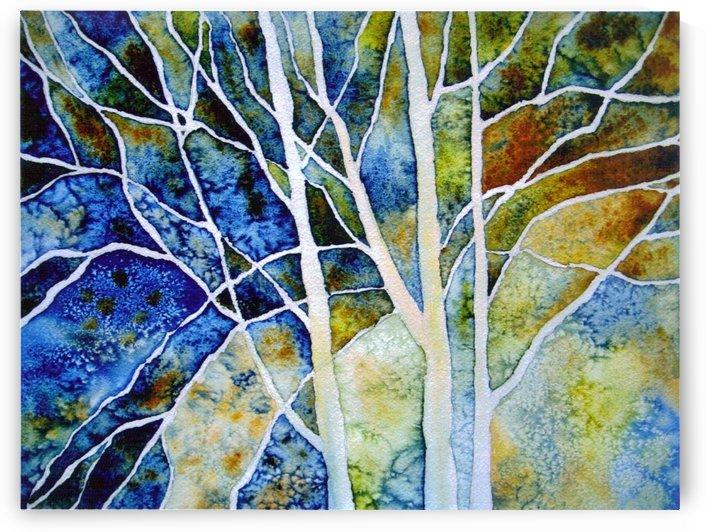Birches by Donna Stares