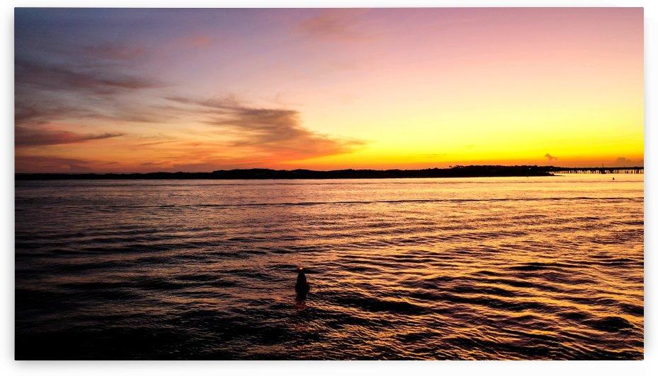 Golden Beach by Destin30A Photo