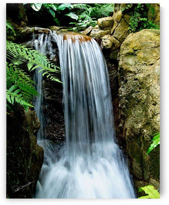 LIttle Hong Kong Park Waterfall by Peter Horrocks