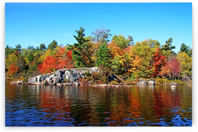 Fall Colors On  Rocky River Shore by Deb Oppermann
